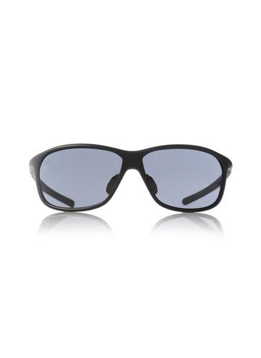 Güneş Gözlüğü-Puma
